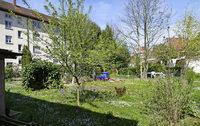 Grünfläche weicht neuen Wohnungen