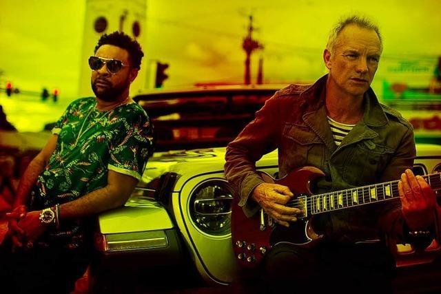 Reggae plus Pop: Das neue Album von Sting und dem Jamaikaner Shaggy
