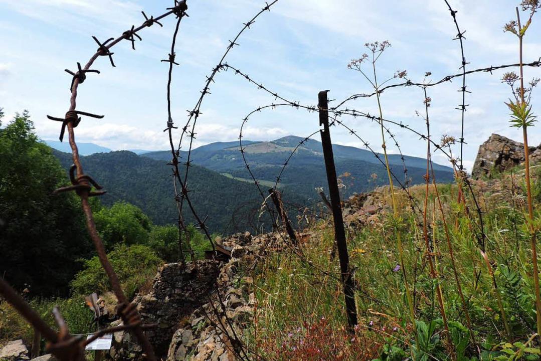 Noch heute sind auf dem Hartmannswillerkopf die Kriegsnarben unübersehbar.    Foto: Sylvia Sredniawa