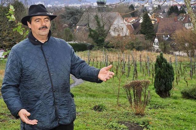 Bernhard Schätzle: Wein als Genussmittel und Kulturträger
