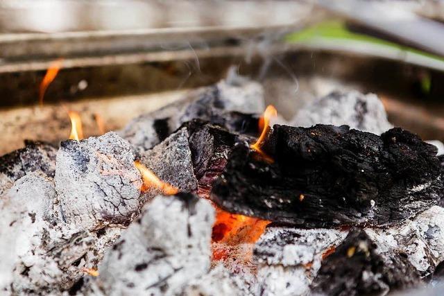 Grillen am Seepark mit Kohle ist ab jetzt verboten