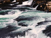 Mikroplastik findet sich auch in heimischen Flüssen