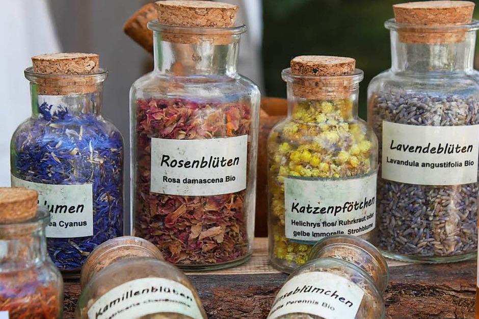 Gaukler, Ritter und Edelfrauen haben mittelalterliches Flair nach Bad Säckingen gebracht. <?ZP?> (Foto: Nina Witwicki)