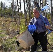 5000 junge Bäume werden gepflanzt