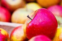 Äpfel im Südwesten werden knapp – wegen des Frost-Frühlings 2017
