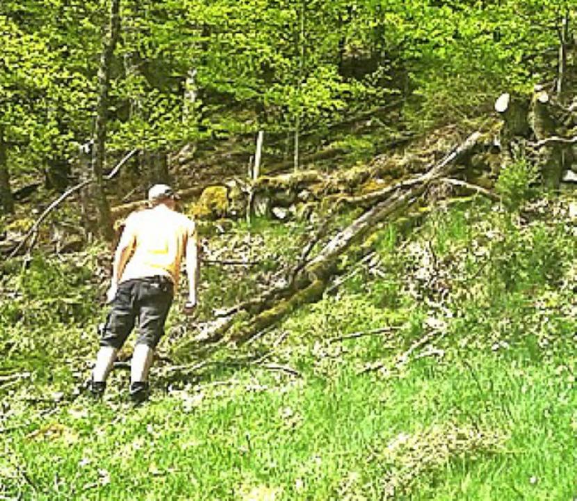 <BZ-FotoAnlauf>Landschaftspfleger:</BZ-FotoAnlauf> Beim Arbeitseinsatz.    Foto: Birgit Kiefer
