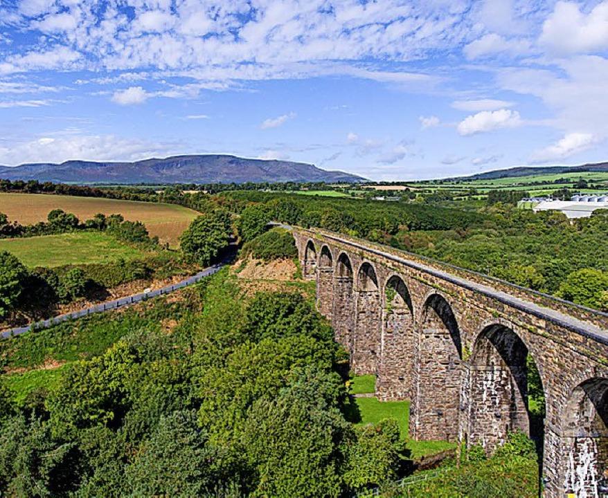 Natur: Irland  | Foto: dpa-tmn