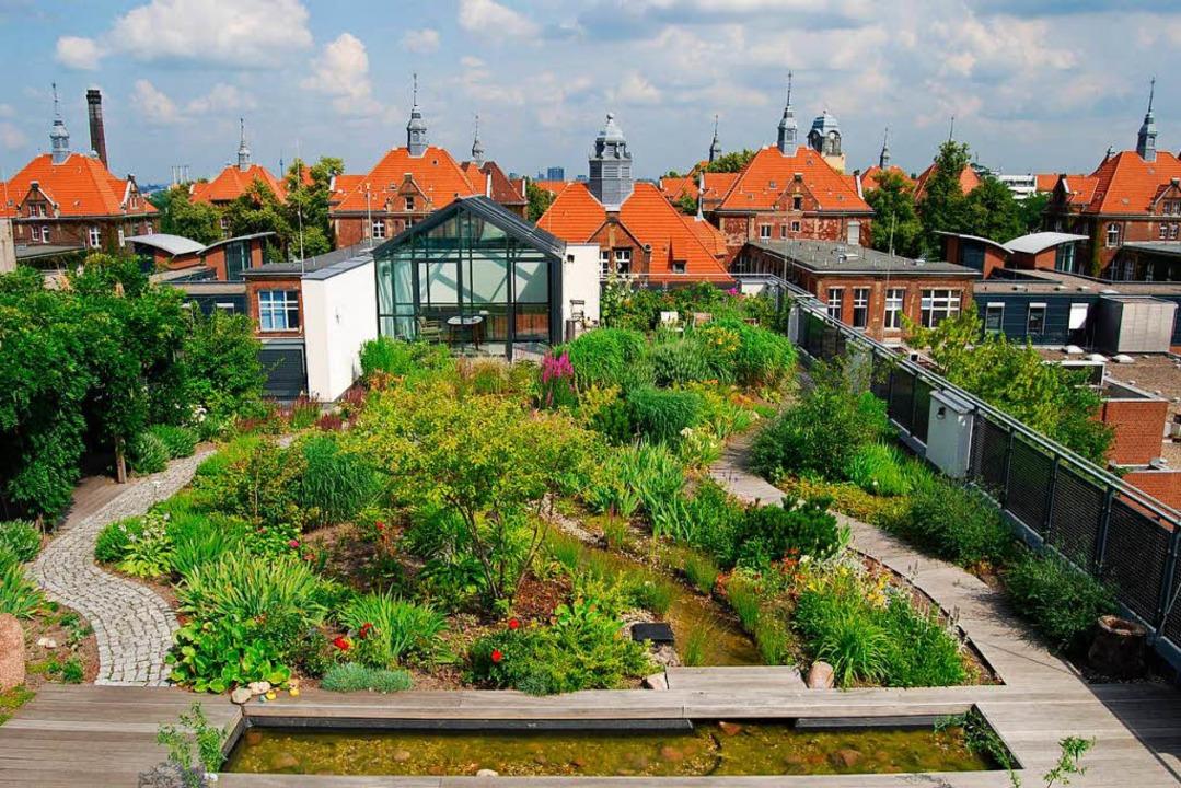 Ein Dachgarten sorgt dafür, dass sich ...aufheizt. Im Winter hält er Kälte ab.   | Foto: Optigrün