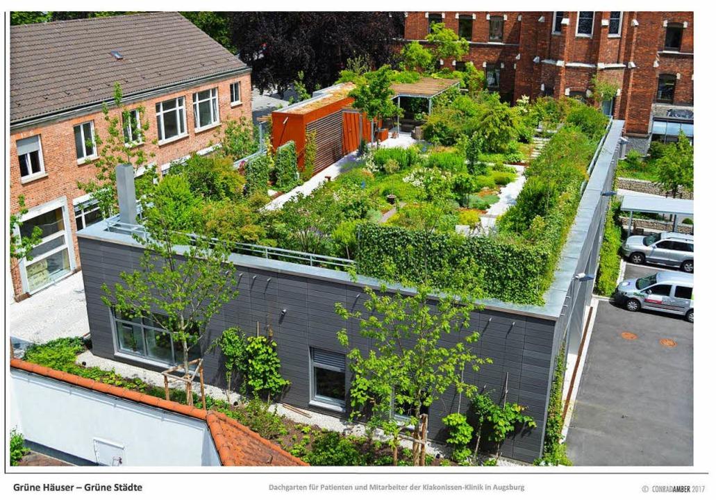 Der Dachgarten der Diakonissen-Klinik ...h auf und verbessert zudem das Klima.   | Foto: optigrün