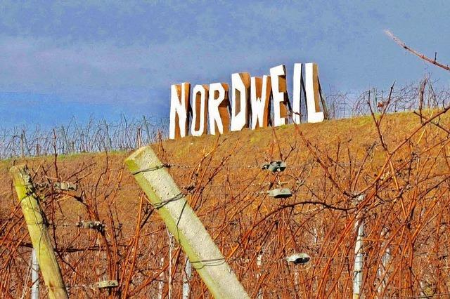 Porträt: WG Nordweil