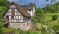 Museumsmühle in Stühlingen-Blumegg bietet am Sonntag, 21. Mai, freien Eintritt