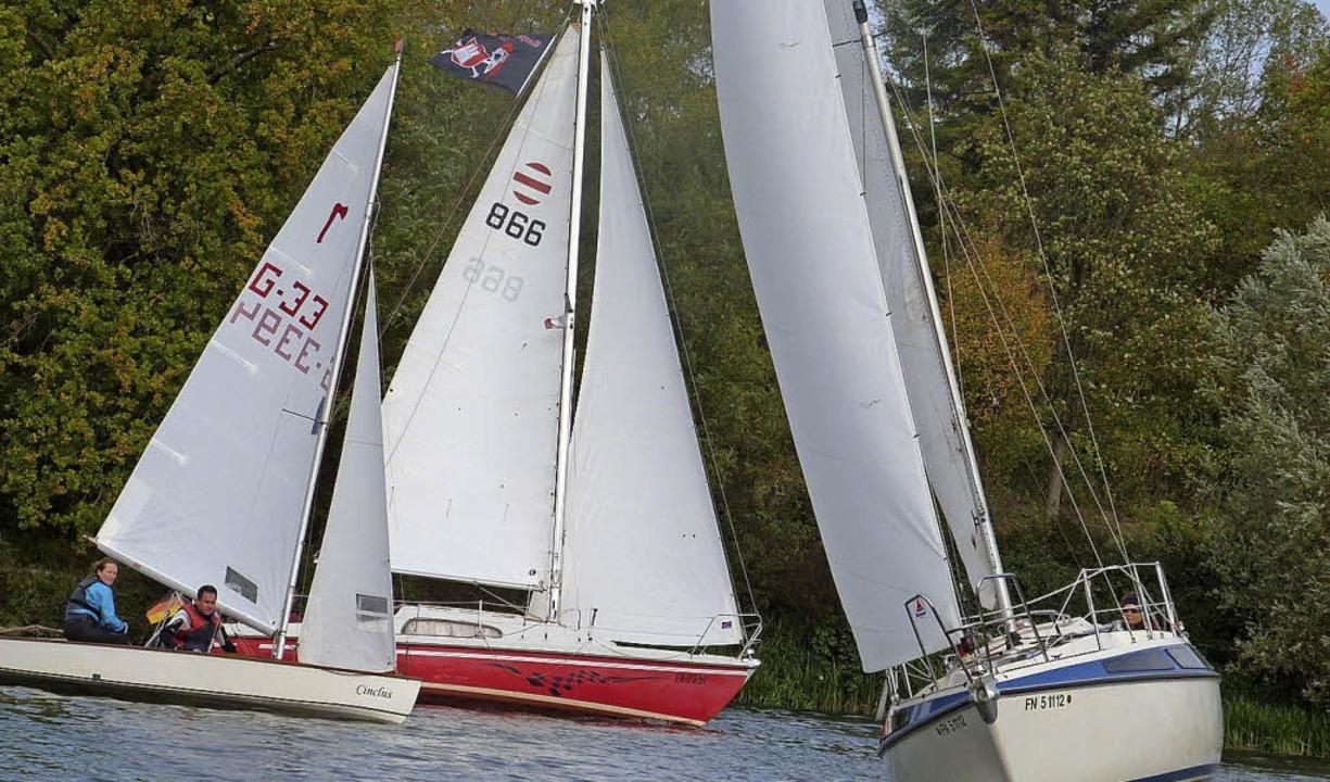 Am Karpfenhod segelten die Mitglieder ...gelclubs Nautic Breisach um die Wette.    Foto: Privat