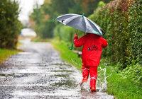 Trotz Wetter-App im Regen? Was Vorhersagen können – und was nicht