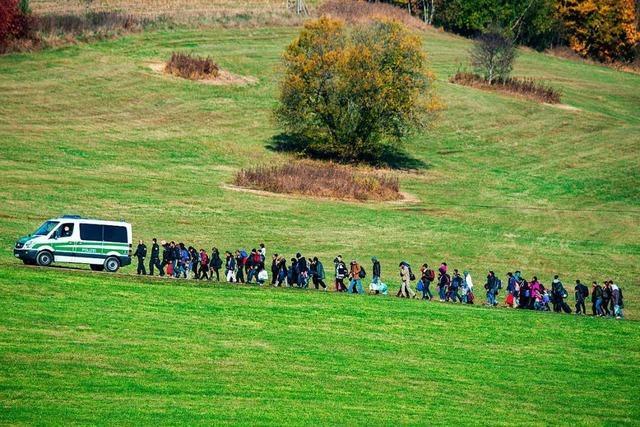 AfD klagt wegen Flüchtlingspolitik der Bundesregierung