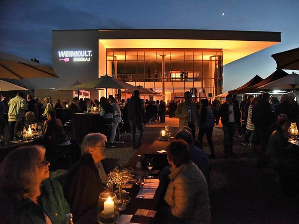 Atmosphäre im Weingarten pur