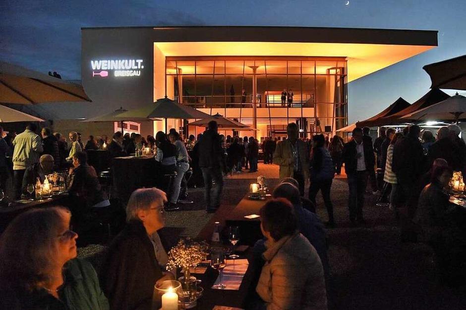 Atmosphäre im Weingarten pur (Foto: Markus Zimmermann)