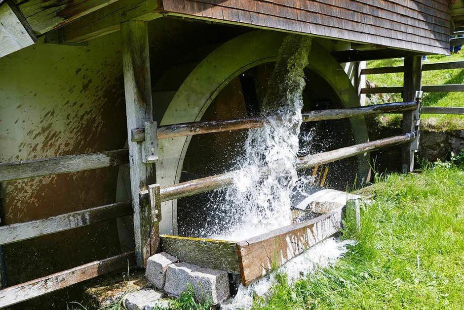 Viel zu erleben gibt es beim Mühlentag im Hochschwarzwald. (Foto: Tanja Bury)