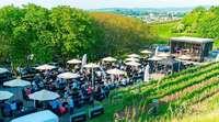 Wie war's bei … der Premiere der Weinkult Breisgau in Ettenheim?
