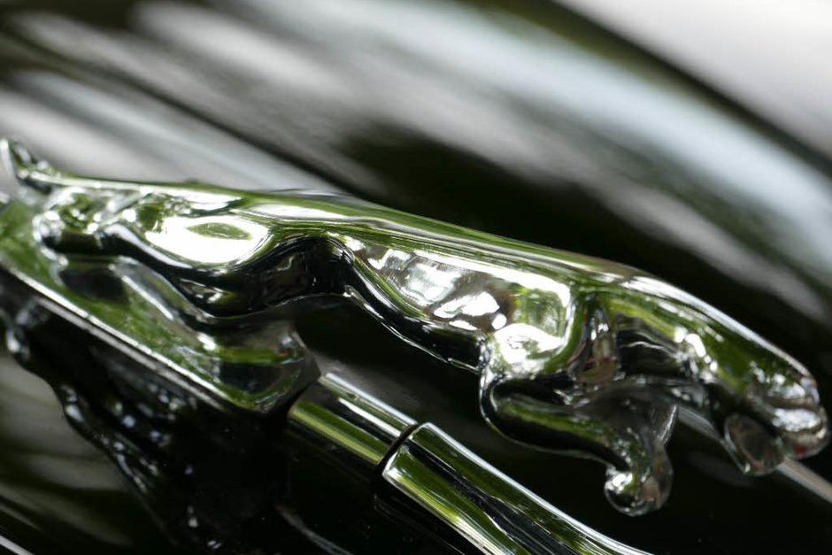 Kühlerfigur Jaguar (Foto: Hans-Peter Müller)