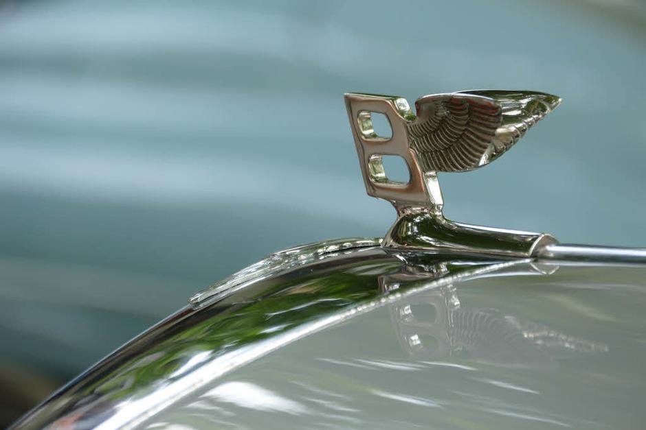 Kühlerfigur Bentley (Foto: Hans-Peter Müller)