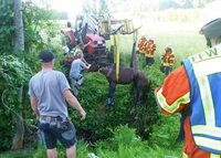 Helfer hieven Pferd mit Traktor aus Graben