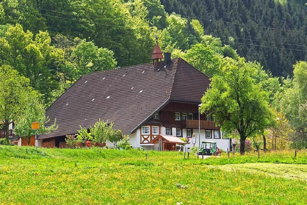 Ein Schwarzwaldhof im Hinteren Prech-tal   | Foto: Joos