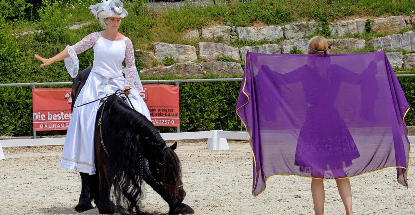 Gestatten? Hengst Yke verbeugt sich bei einer Einzeldressur mit Sandra Heine.   | Foto: Ansgar Taschinski