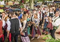 Zigeuner feiern närrisches Jubiläum