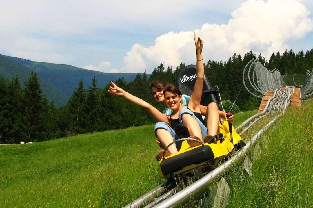 Eine der längsten Sommerrodelbahnen Deutschlands steht am Hasenhorn in Todtnau.  | Foto: ZVG