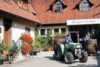 Weingut Behringer – ein Traditionsbetrieb mit frischem Image