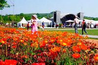 Auf zum BZ-Familientag bei der Landesgartenschau in Lahr am 24. Juni mit tollen Aktionen und attraktivem Rabatt!