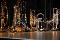Dem Musikverein Freiburg-Waltershofen wurden 13 Instrumente geklaut