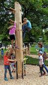 Kinder stürmen den Kletterbaum