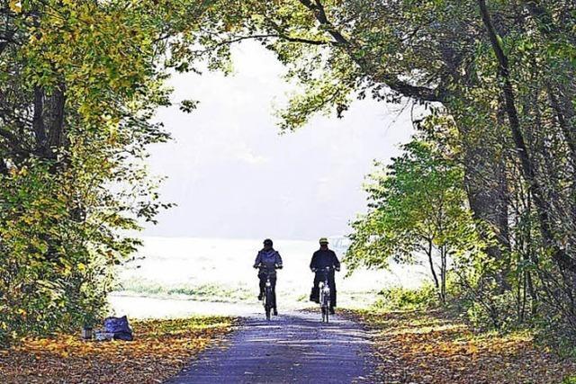 Stadterkundung per Rad bei