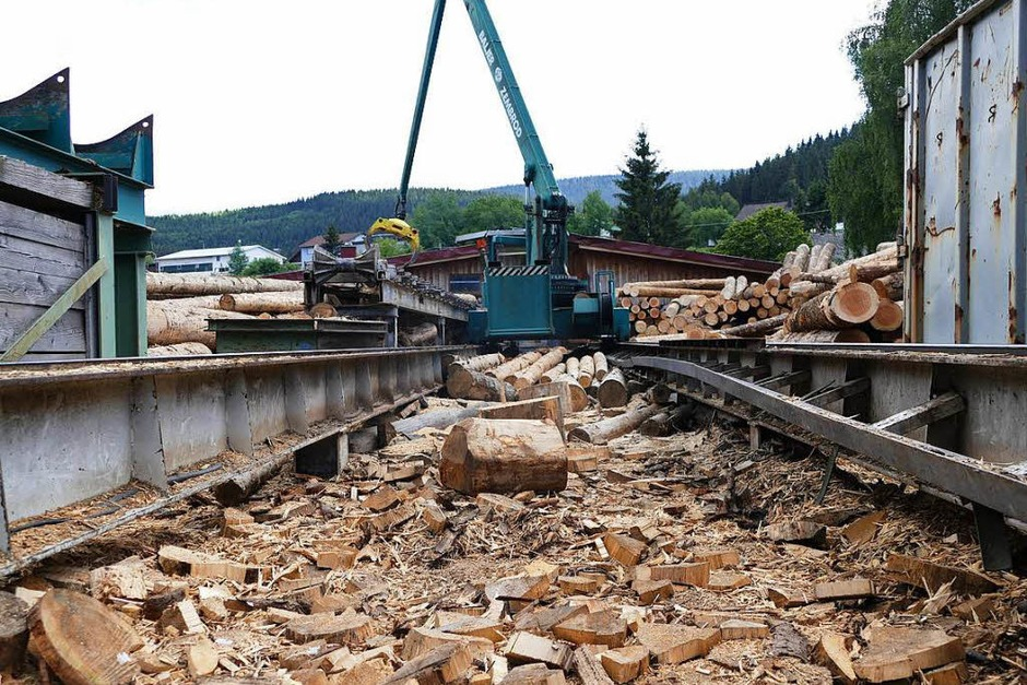 Rundgang durchs Sägewerk Ketterer in Neustadt. <?ZP?> (Foto: Tanja Bury)