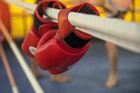 In Reinach stehen 17 Kickboxer gleichzeitig vor Gericht