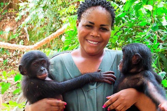 Ein Tierschutzzentrum kümmert sich um Bonobo-Waisen
