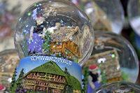 Wie verändert der Klimawandel den Tourismus im Schwarzwald?
