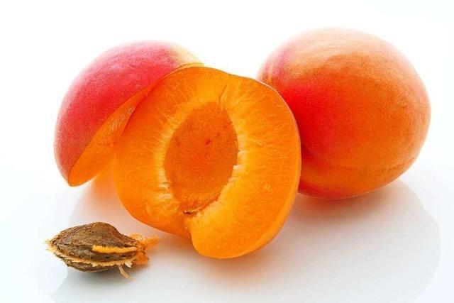 Die Aprikose schützt die Sehkraft
