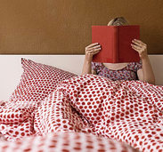Hilfe bei Bettwanzen