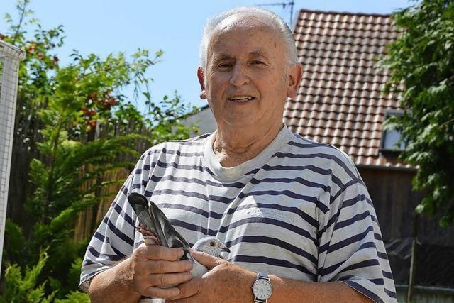 Der letzte Taubenzüchter von Oberschopfheim