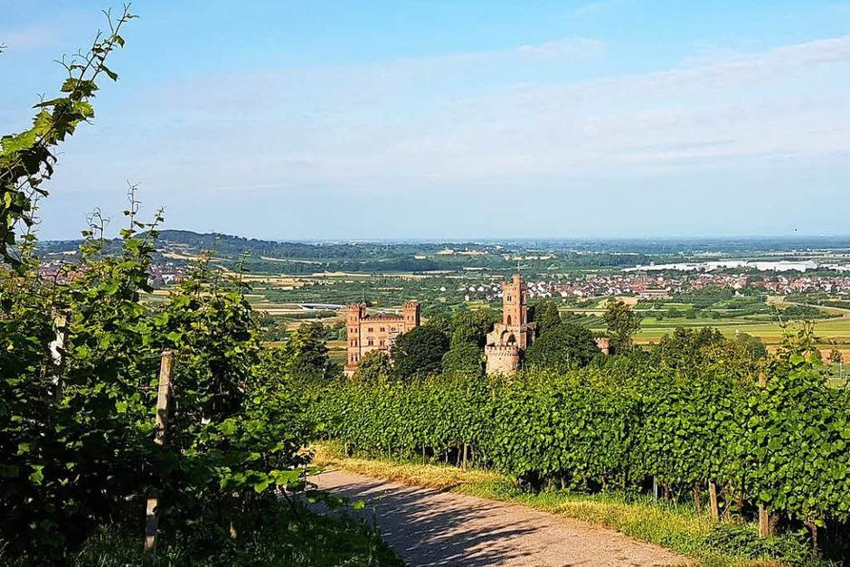 Ausgangspunkt: das Schloss Ortenberg (Foto: Karl Kovacs)