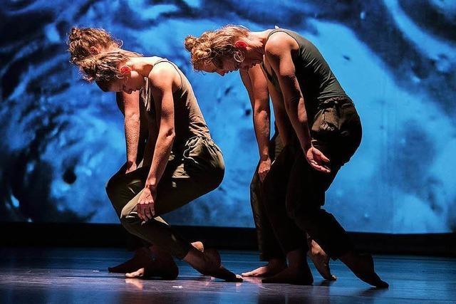 Last-Minute-Tipp: Der Tanz- und Performanceabend