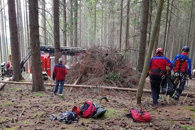 Gleitschirmflieger bei Titisee-Neustadt aus Baum gerettet