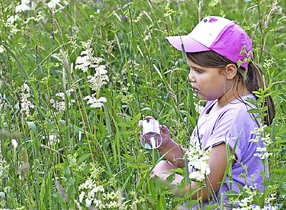 Interessiert erforschten die Grundschüler die Wiesen am Reichenbach.  | Foto: Silas Schwab