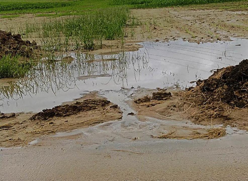 Bei Starkregen  müssen Gräben und Abflüsse frei sein.  | Foto: SCHÜTZ
