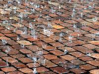Woher der besondere Geruch nach einem Sommerregen kommt