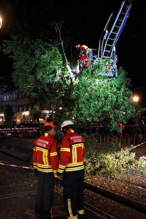 Die Feuerwehr zerlegte den Baum, um die Bertoldstraße wieder frei zu machen.  | Foto: Thomas Kunz