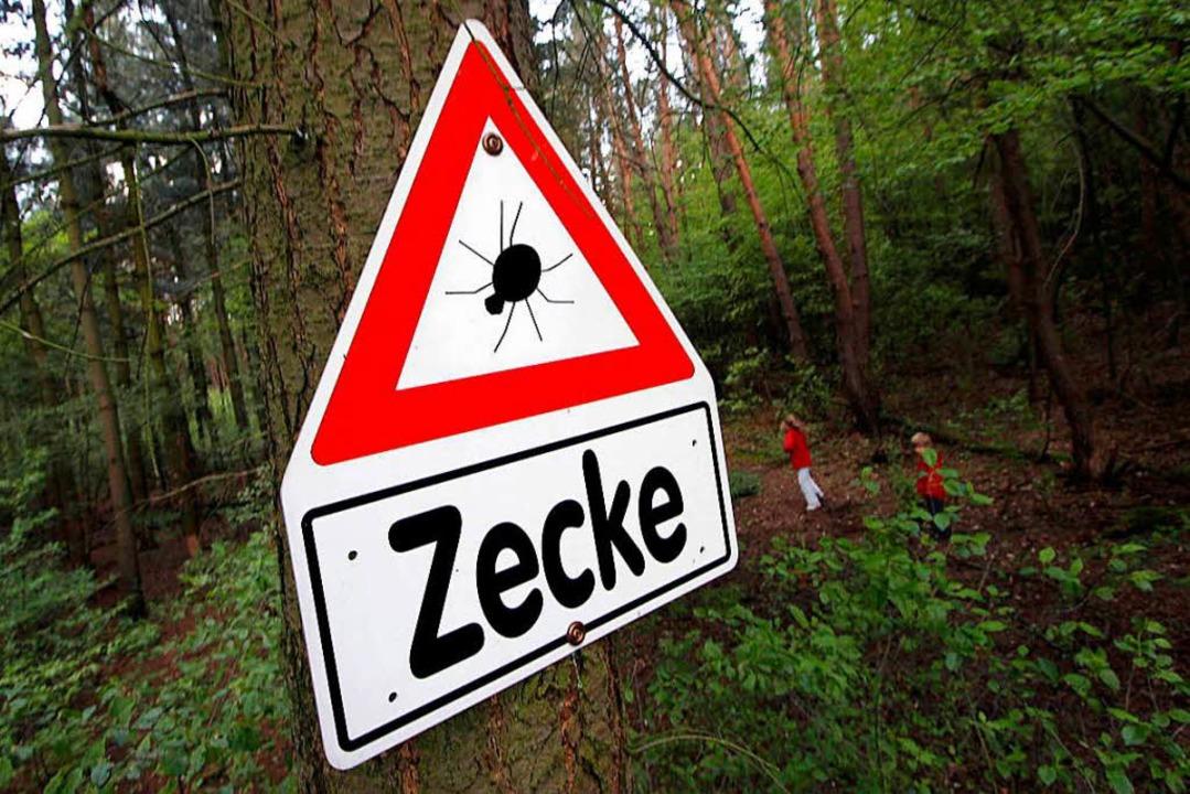 BAG meldet deutliche Zunahme von Zecken-Enzephalitis-Fällen