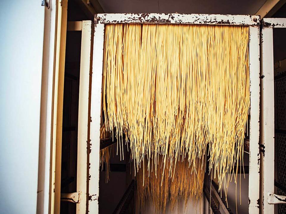 Zum Trocknen geht es in die Trockenkammer.  | Foto: Fabio Smitka